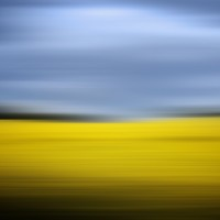 Creative landscape photography Leeds Yellow field